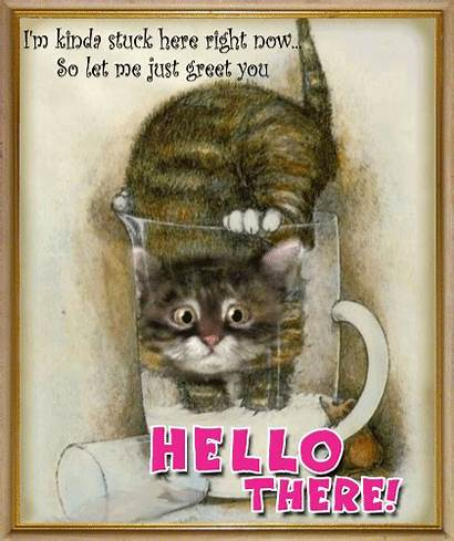 Hello Cat Hi Greets Greetings Card Ecard