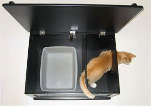 cat litter box ideas the designer catbox is an answer to litter box problems