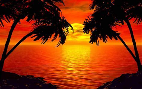 paradise sunset tropical island palm sea red sky hd wallpaper  wallpaperscom
