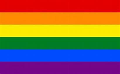 Lgbtq Pride Flags Flag Different Mean Rainbow