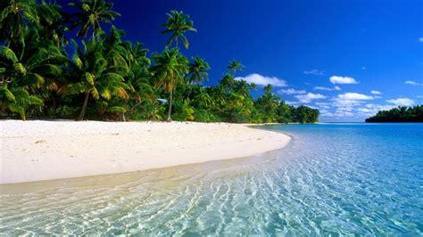 tropical beach paradise blog  negocios pinterest