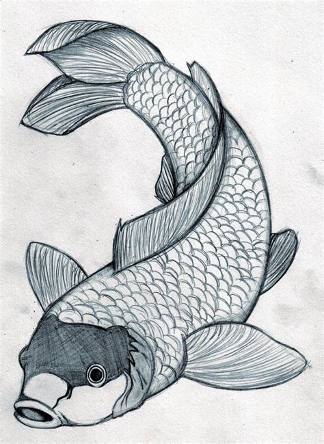 fish designs   japanese koi fish tattoo