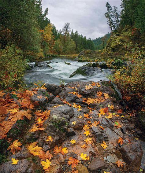 finding fall   eugene oregon northwest travel