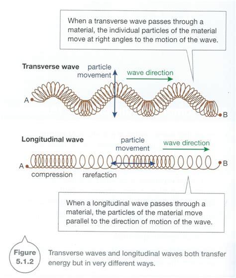 transverse and longitudinal waves worksheet free