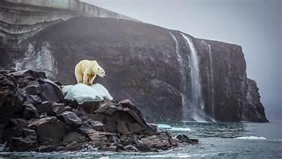 Geographic National Bear Polar Cory Richards Adventure