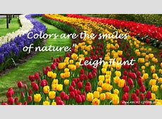 The Joyful Colors of Spring – Inspirational Quotes and
