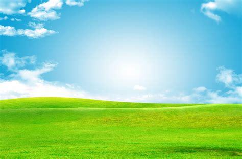 blue sky green grass background   gangu green