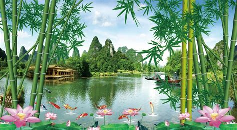 landscape wallpaper bamboo forests lotus pond murals