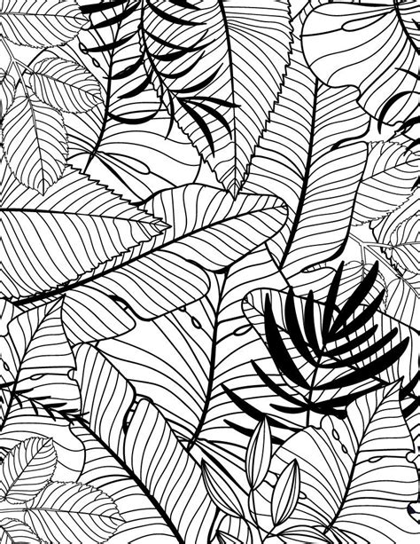 texture  imprimer feuilles tropicales coloriage pour adulte