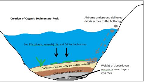 gc5g4rv what did the limestone say to the geologist