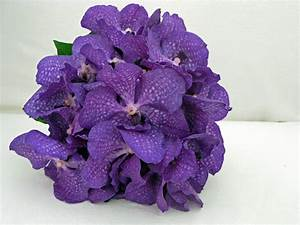 Bouquet Wedding Flower « Bouquet Wedding Flower