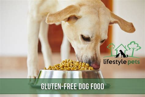 Gluten Free Dog Food