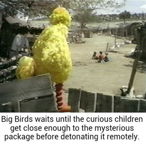 Big Bird Memes - don t ever annoy big bird hottest memes