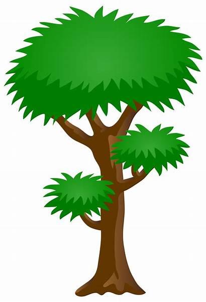 Tree Clip Clipart Cartoon Transparent Trees Yopriceville