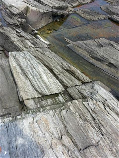 looks like petrified wood but it s picture of cape