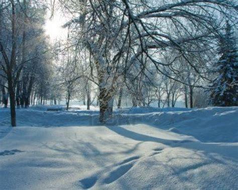 Beautiful Winter Wallpaper by Beautiful Winter Backgrounds Wallpaper Cave