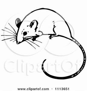 Mouse Clipart Black And White | Clipart Panda - Free ...