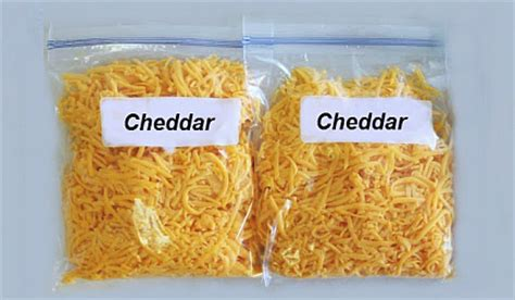 can u freeze cheese top 28 can you freeze cheese can you freeze ricotta cheese find the answer here can you