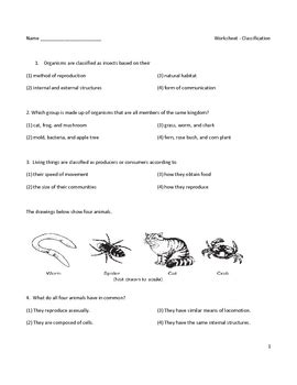 middle school biology worksheet classification by educator store