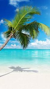 Beach Ringtones And Wallpapers