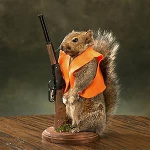 Squirrels Hunting