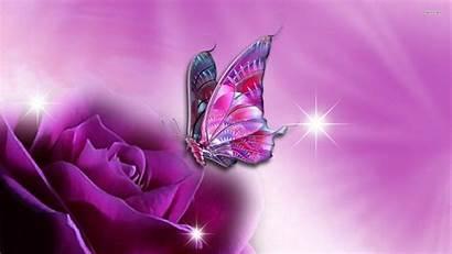 Butterfly Purple Wallpapers