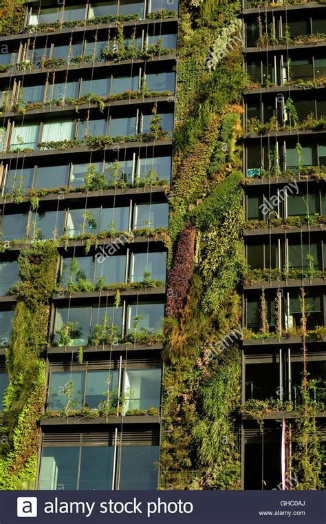 Vertical Garden Sydney by Vertical Garden On Sydney High Rise At Green Square Stock