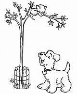 Tree Coloring Cat Pages Arbor Printable Bestcoloringpagesforkids Sheets Dog Dinosaur Flower sketch template