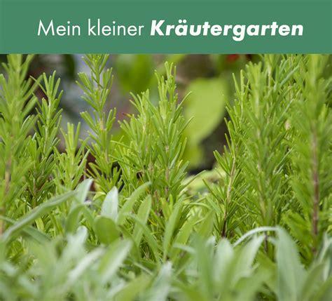 Pflanzen Für Die Küche by Kr 228 Uter Gem 252 Se F 252 R K 252 Che Und Garten Im Pflanzen Und