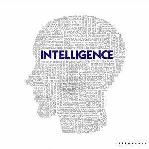 Essays On Emotional Intelligence Custom Argumentative Essay Writers  Essays On Emotional Intelligence In The Workplace