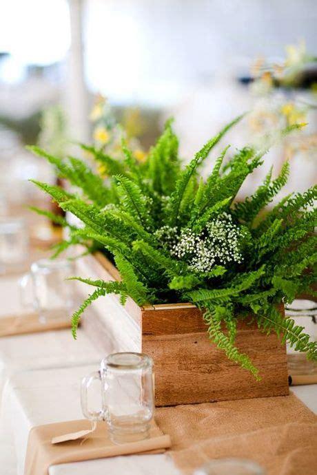 Decorative Ways To Use Ferns On Your Wedding Day Wedding