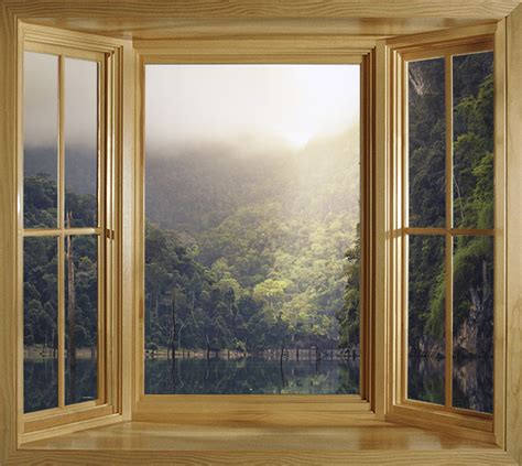 rain forest landscape window frame view wall mural