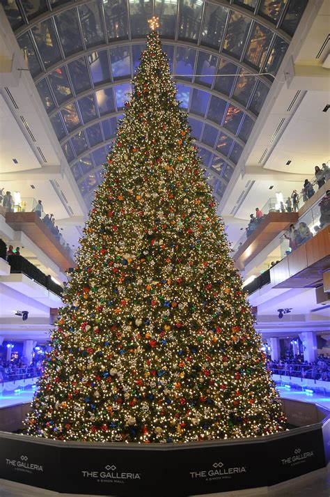 where to buy christmas trees in houston a galleria s tree lighting lures a reality tv and requires