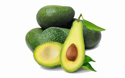 Alpukat Clipart Buah Gambar Avocado Guacamole Buahaz