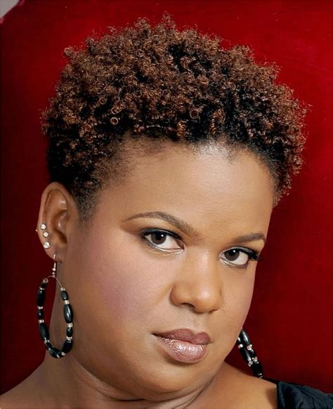 elegant short natural african american hairstyles