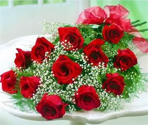 12 Red Rose Hand Tied Bouquet - Flowers and Floral Art ...