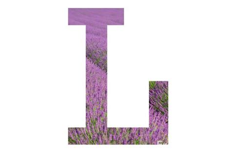Letter L Pictures, Free Use Image, 2001-12-4 By Freefoto.com