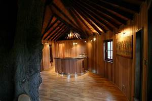 This Family Lives In A Tree House That Looks Like A Castle ...