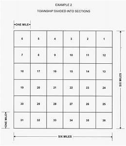 Rectangular Survey System