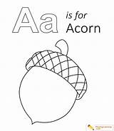 Coloring Acorn Printable Letter Sheet Learning Alphabet Ant Anteater Alligator Name sketch template