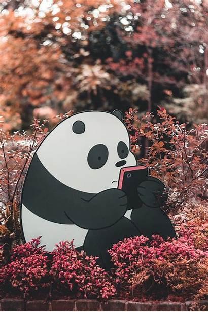 Bare Panda Bears Bear Iphone Wallpapers Kawaii