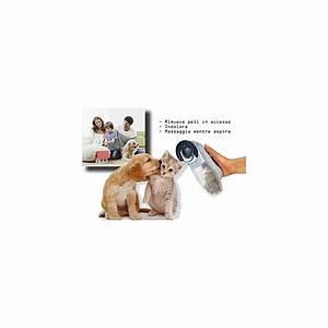 Aspirateur Poil De Chien : aspirateur 2 en 1 limine l 39 exc s de poils chien chat shed ~ Medecine-chirurgie-esthetiques.com Avis de Voitures