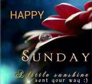 Sunday Happy Sunshine