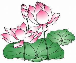 Lotus Flower Drawings - ClipArt Best