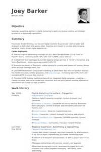 digital marketing consultant resume sles visualcv