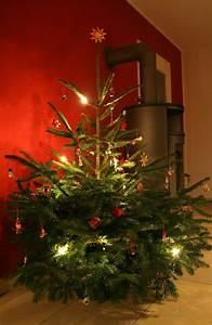 Weihnachtsbaum Wasser Geben : best 28 weihnachtsbaum wasser nasse weihnachtsfeier taucher schm 252 cken baum unter wasser ~ Bigdaddyawards.com Haus und Dekorationen