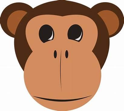 Monkey Face Clipart Vector Dmca Complaint Favorite