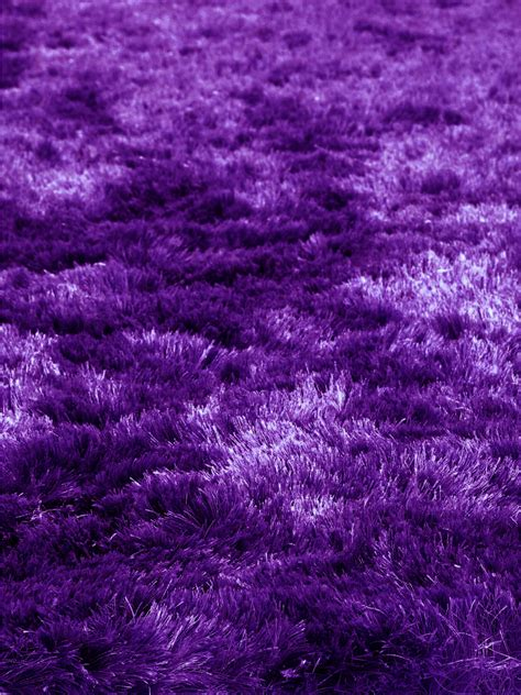 quirk purple shag rug from the shag rugs collection at