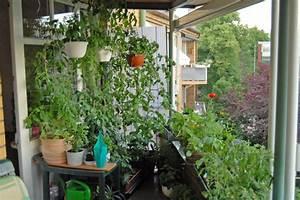 Gemüse Auf Dem Balkon : der balkon katekit 39 s garten ~ Lizthompson.info Haus und Dekorationen