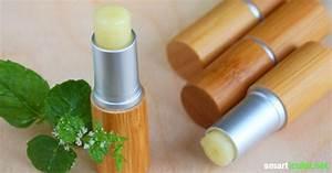 Lippenbalsam Selber Machen : minze zitrone lippenbalsam einfach selber machen ~ Frokenaadalensverden.com Haus und Dekorationen